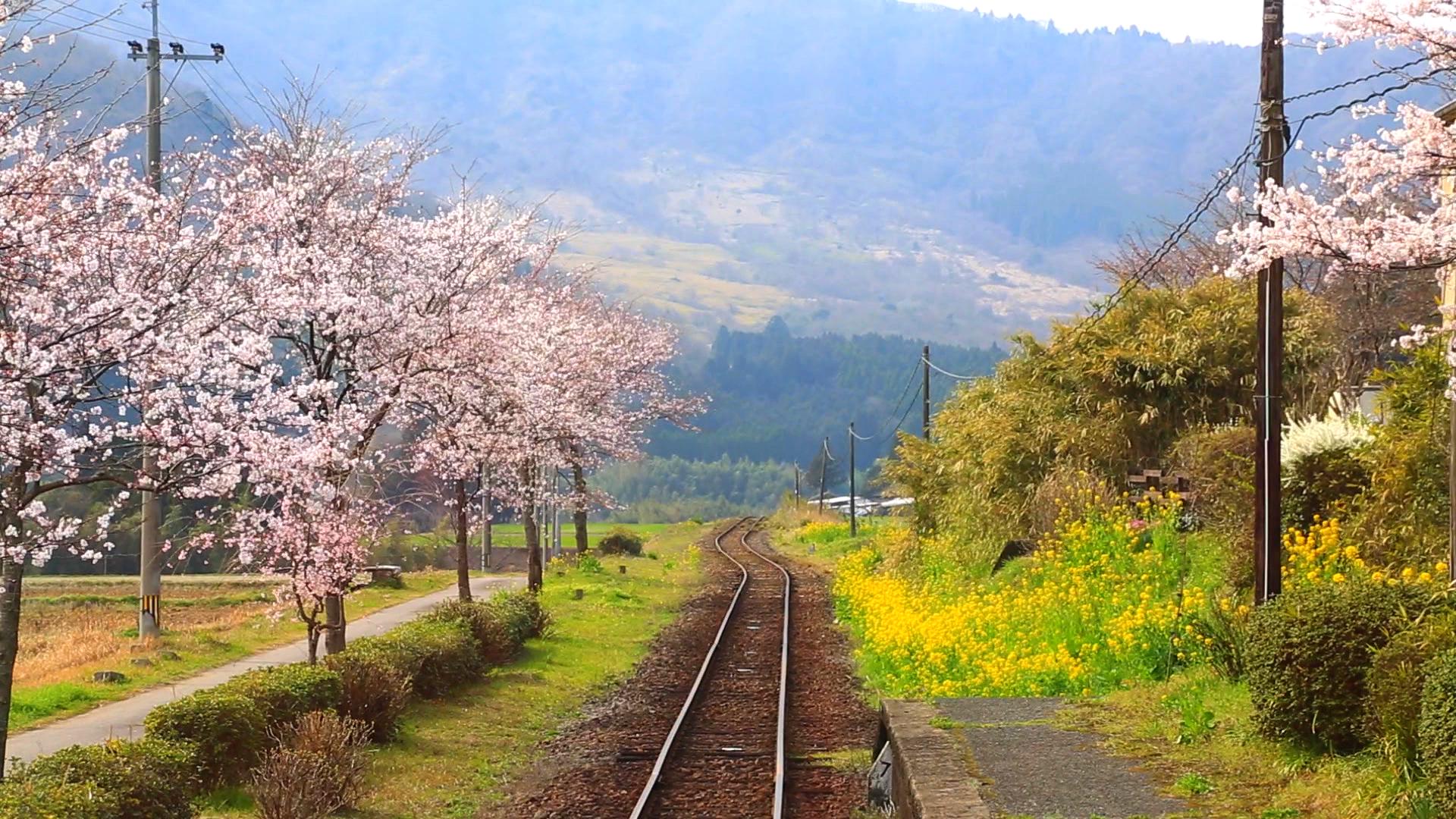 [정통品格여행] 벳부/유후인/후쿠오카+료칸 3일 ♨