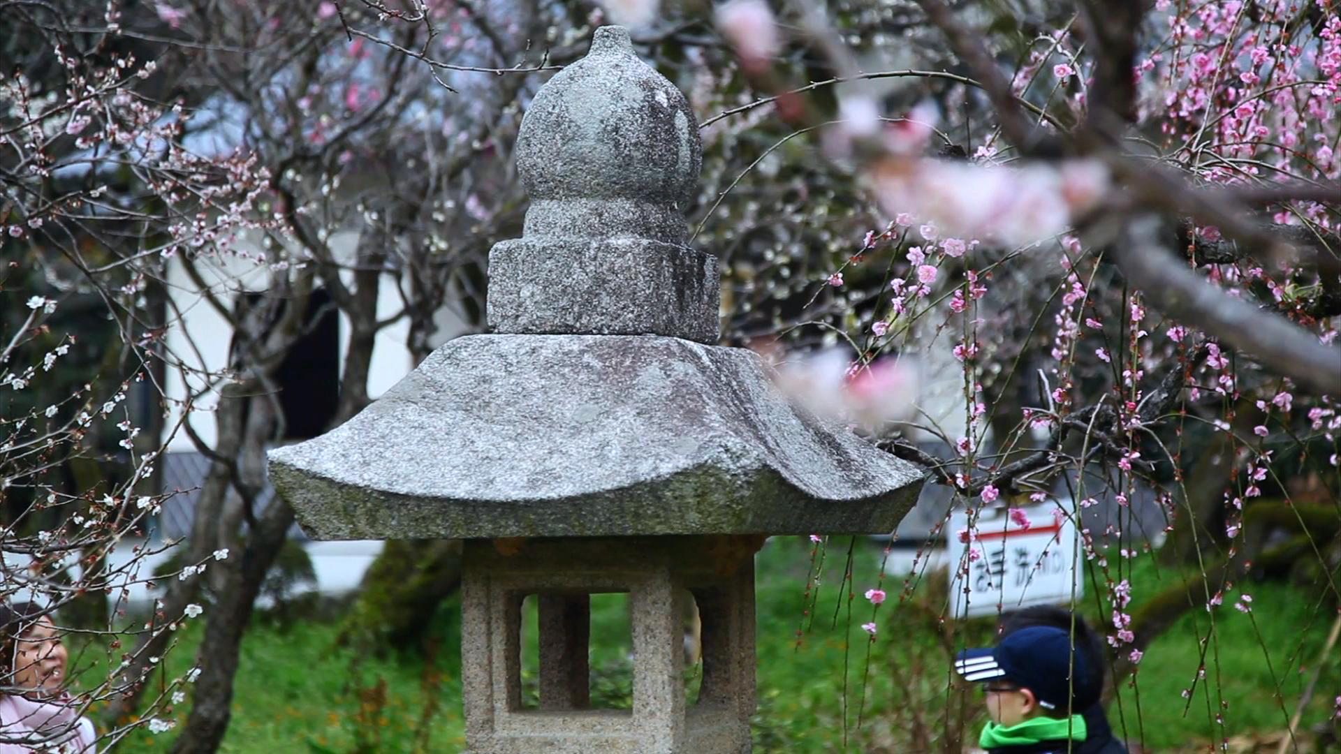 [숨겨진보석] 나가사키/운젠/후쿠오카+료칸체험 3일♨